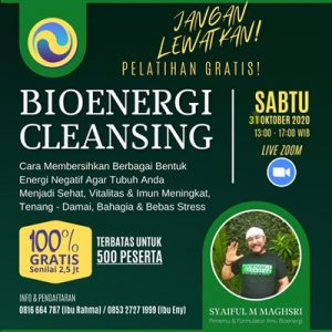 Bioenergi Cleansing