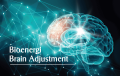 Bioenergi Brain Adjustment